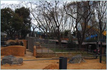 El frío afecta también a los animales del Zoo de Barcelona