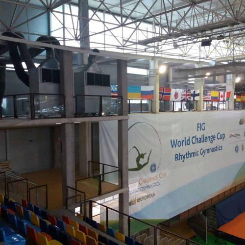Equipos de climatización campeonato del mundo de gimnasia rítmica en Guadalajara