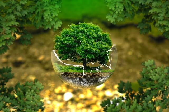 Política ambiental TST