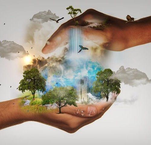 Política ambiental Torres Servicios Técnicos